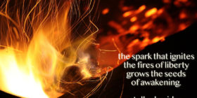 spark-fires-liberty-seeds-great-awakening-quote